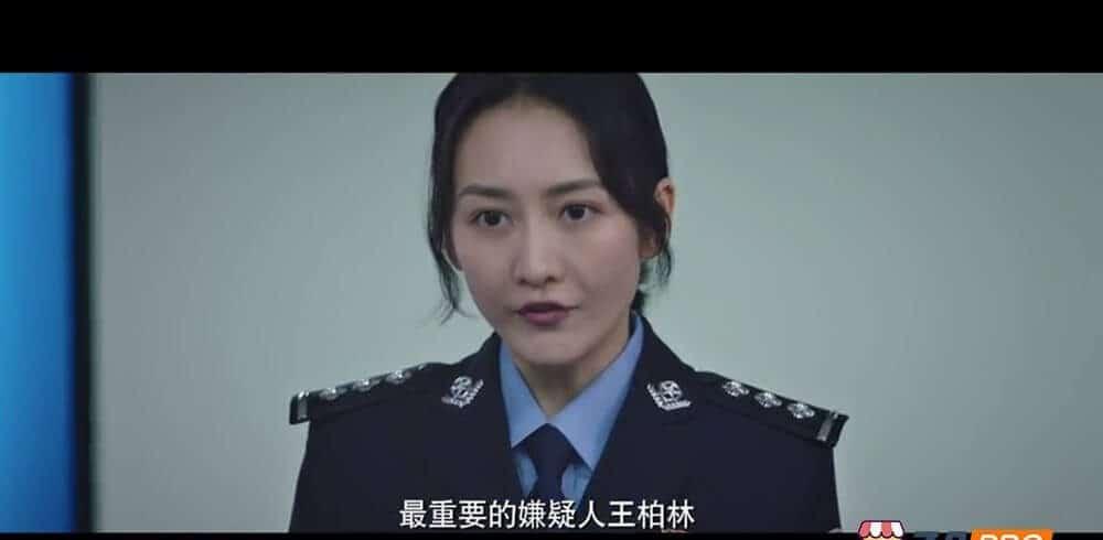 猎狐.4K2160P全44集.国语中字